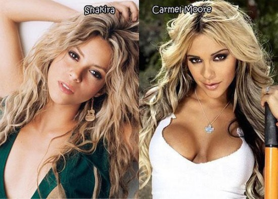 Porn-Star-Doppelgangers-Of-Famous-Celebrities-014