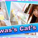 """ตัวตนที่แท้จริงของโจรสาวขโมยในย่านชินจูกุ """"Reiwas's Cat's Eye"""" ได้ถูกเปิดเผย ขโมยเงินไปกว่า 3 พันล้านเยนในเวลาสามเดือน"""