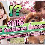 """เมื่อสาว AV """"Akiho Yoshizawa"""" ที่ออกจากวงการแล้วนั้น ถูกทางค่ายนำผลงานอันเซ็นเซอร์ออกมาปล่อย"""