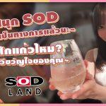 ข่าวสารAV-สวนสนุก SOD เปิดอย่างเป็นทางการแล้วนะ~ มาดื่มสักแก้วไหม? กับดาราเอวีขวัญใจของคุณ! – SOD LAND