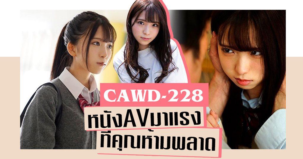 CAWD-228 Yui Amane